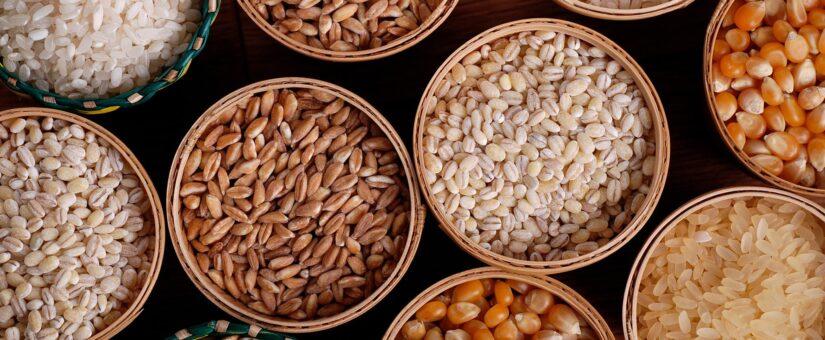 Экспорт зерна снизился после введения пошлины